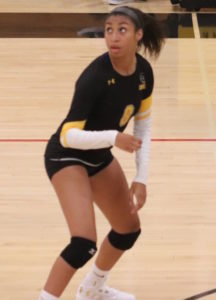 Girls Volleyball: Amity Tops Guilford After Five Matches