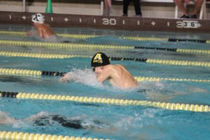 Boys Swimming And Diving: Amity Vs Cheshire — Here's What Happened